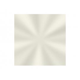 SACO TRANSP 11x19,5cm LISO C/50