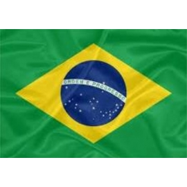 BANDEIRA DO BRASIL 1M POR 0.70CM